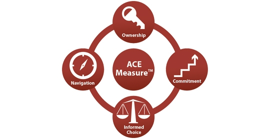 ACE Measure