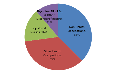 Occupational Category Share of Health Care Jobs in 2015
